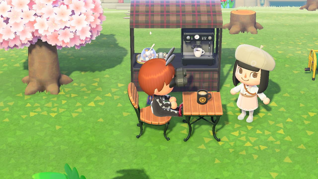 Animal Crossing New Horizon Multiplayer 2